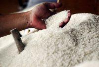 beras bulog indonesia