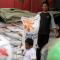 Panen Raya, BULOG Targetkan Serap Gabah 577 Ribu Ton